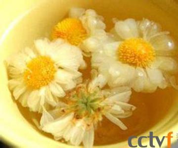 你知道菊花茶的来源和功效吗? 这类人千万不能喝