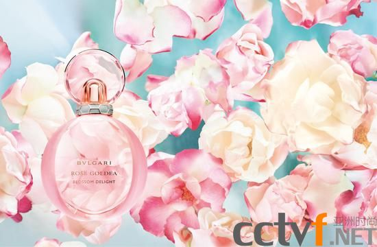 01. BVLGARI Rose Goldea Blossom Delight宝格丽欢沁玫香女士香水