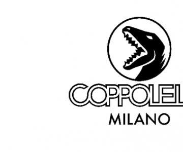太平鸟入局潮牌运动市场  孵化意大利街头滑板潮牌COPPOLELLA